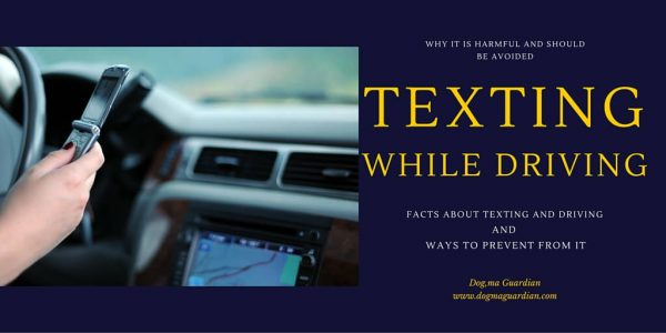 Why to Prevent your Drivers Texting While Driving